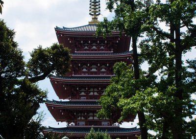 Pagoda desde los jardines del Templo