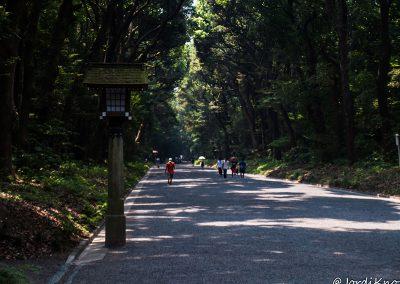 Larga avenida que cruza el parque hasta la entrada de Harajuku