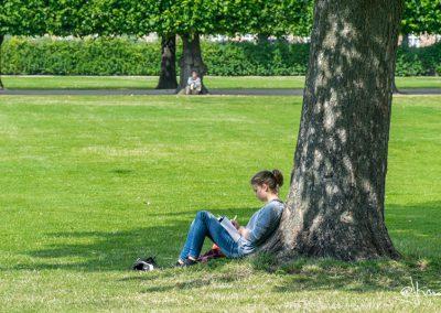 Estudiando en la sombra, Copenhagen